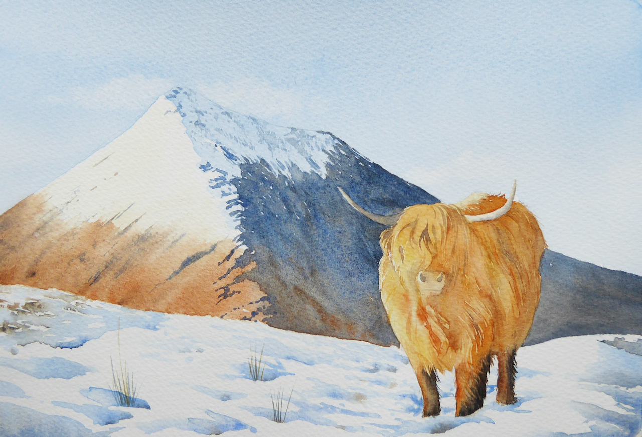 Highland Cow Christmas Card Painting