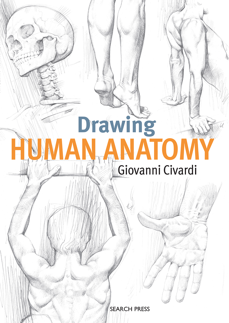 Drawing Human Anatomy