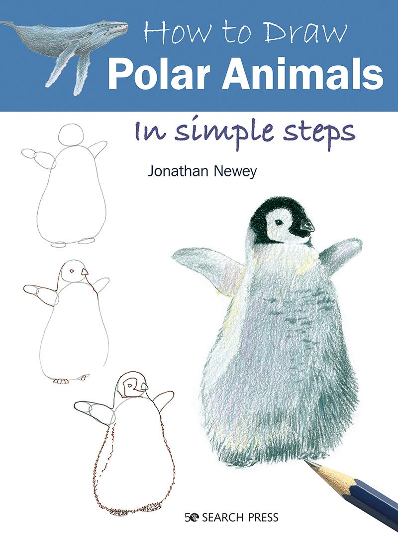 How to Draw: Polar Animals