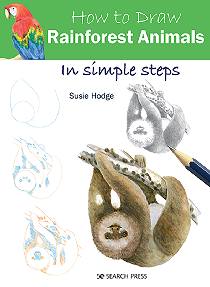 How to Draw: Rainforest Animals